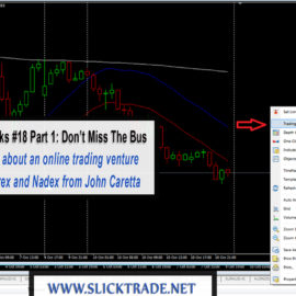 Pipsqueaks #18 – Part 1: Don't Miss the Bus with Forex Trading