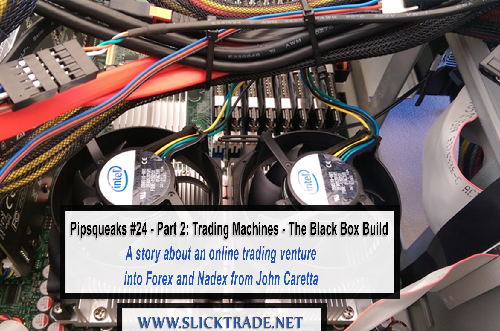 Building a black box trading system