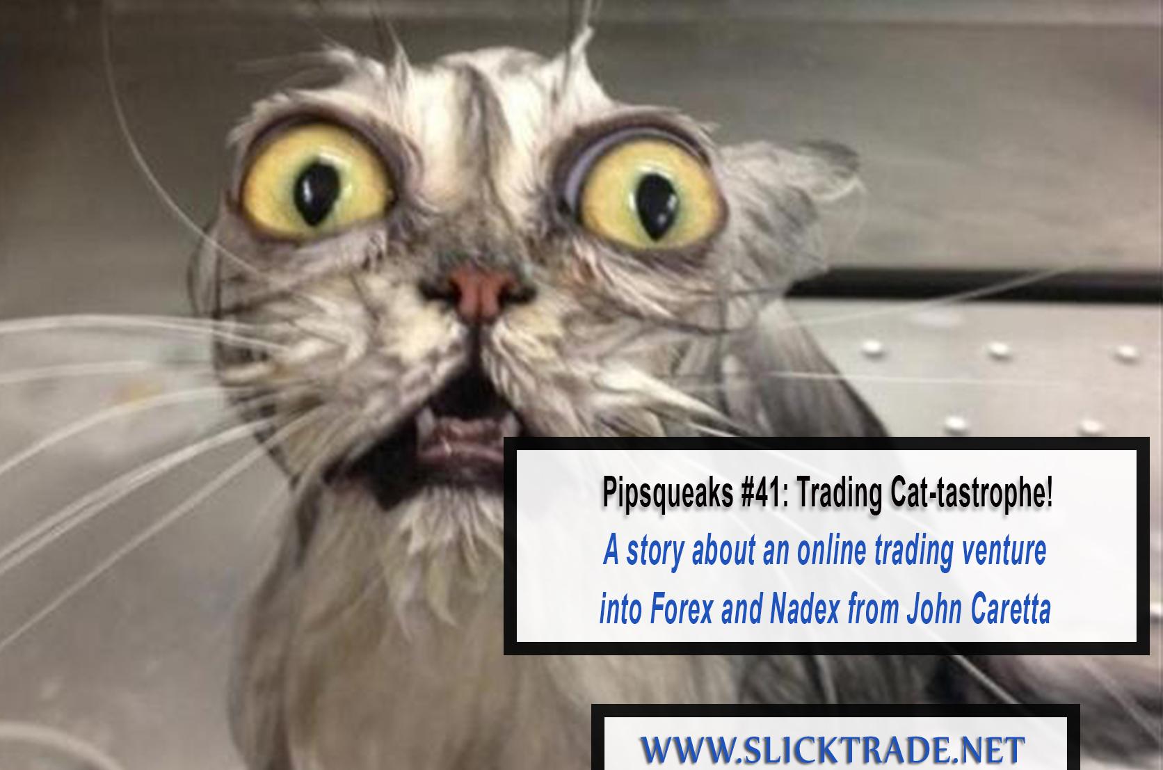Pipsqueaks 41 Trading Cat-Tastrophe
