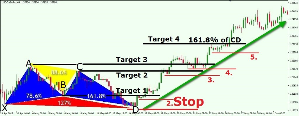 harmonic stop loss and take profit
